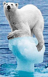 http://high-street.org/sidepic/polar.bear.png