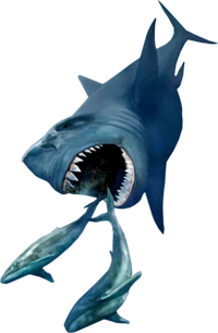 http://high-street.org/sidepic/sharks.png