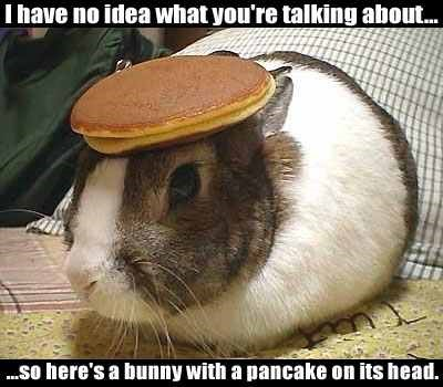 http://high-street.org/uploads/11_bunny_with_pancake.jpg