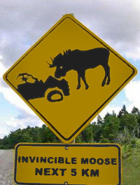 https://high-street.org/sidepic/inviciblemoose.jpg