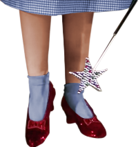 https://high-street.org/sidepic/rubyredslippers.png