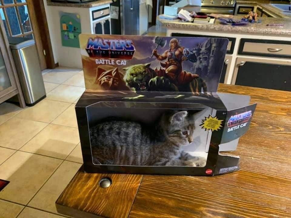 https://cruelery.com/uploads/110_battle_cat.jpg