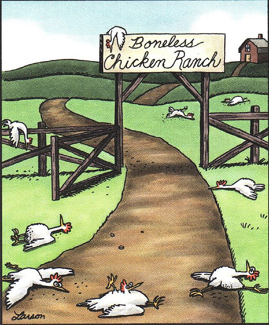 https://cruelery.com/uploads/11_boneless-chicken-ranch-far-side.jpg