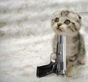 https://cruelery.com/uploads/thumbs/12_kitten_die.jpg
