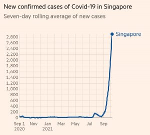 https://cruelery.com/uploads/thumbs/307_singapore-covid-chart-2.jpeg